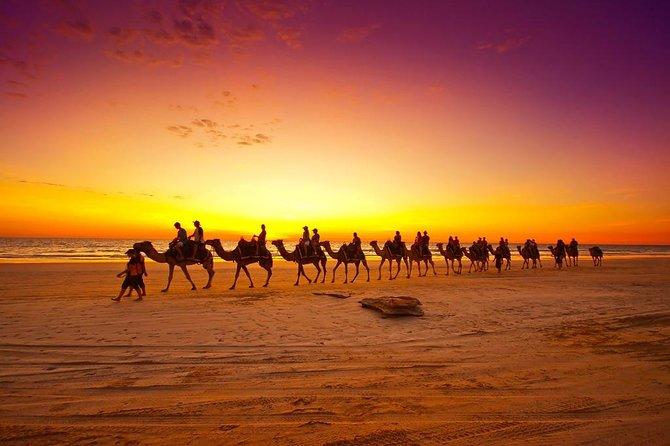 Sunset Camel Ride In Agadir