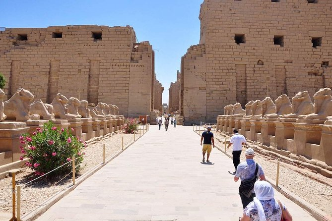 Karnak Temple by Horse and Carriage