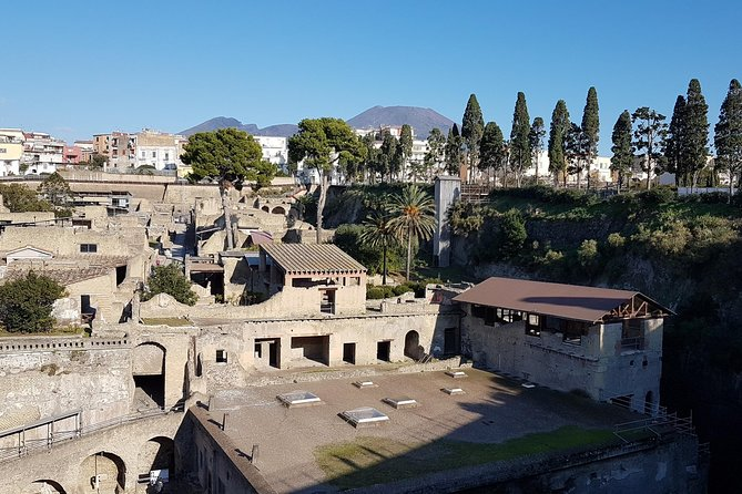 Vesuvius and Herculaneum Day Trip from Naples