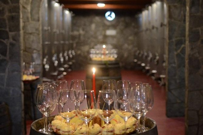Castle Rajhenburg and House of Wines & Chocolate - Private tour from Ljubljana photo 8