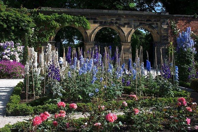 The Ornamental Garden