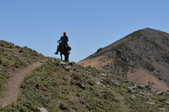 Andes Horseback Riding, local experience & BBQ