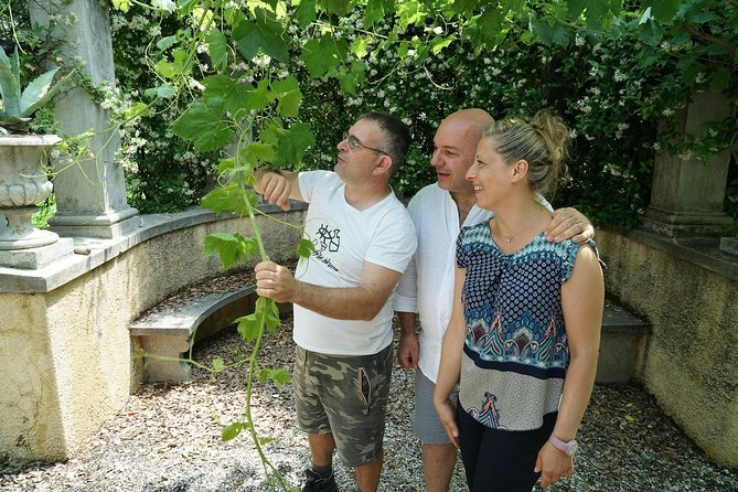A day as Valpolicella winemaker