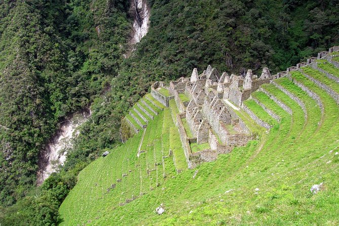 Short Inca trail to Machu Picchu in 2 day, andean Perú - Private service