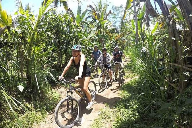 Kintamani Downhill Eco-Cycling Tour