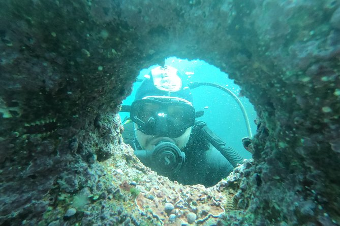 Diving excursion in Quintay