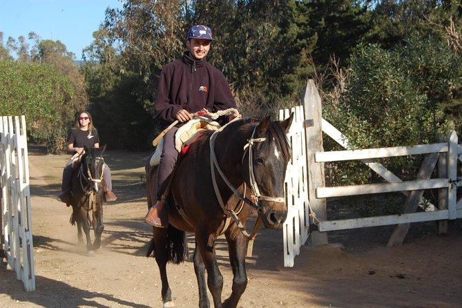 Horseback riding at sunset in Quintay, Valparaíso
