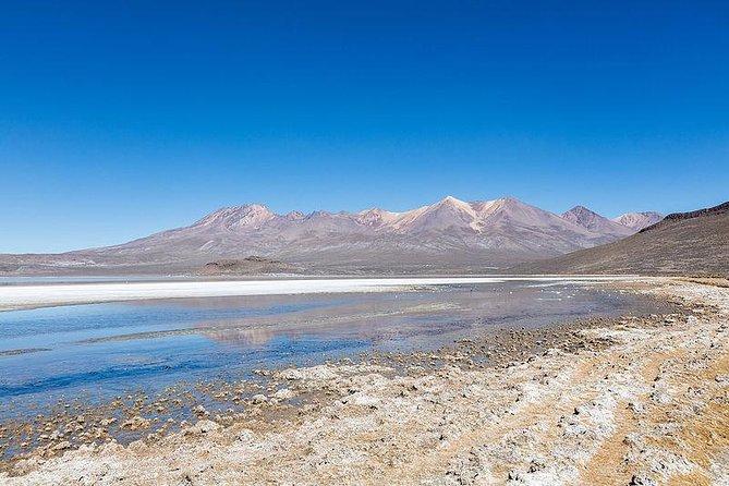 Day Tour to Laguna de Salinas