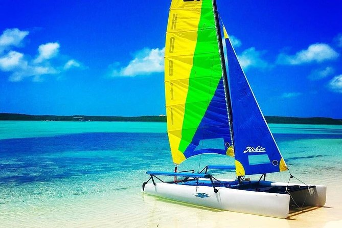 Hobie Cat Sailing with Miami Watersports