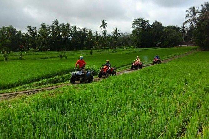 Bali ATV Quad Biking In Ubud
