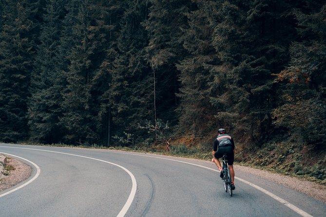 Nuwara Eliya Highlands Cycling Tour from Kandy