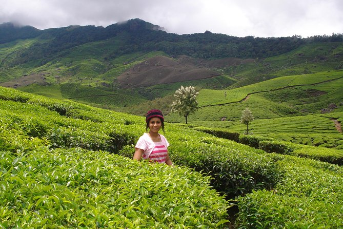 MUNNAR Tour Package (2N 3D) - (Given Price is valid for Min 2 Bookings & above)