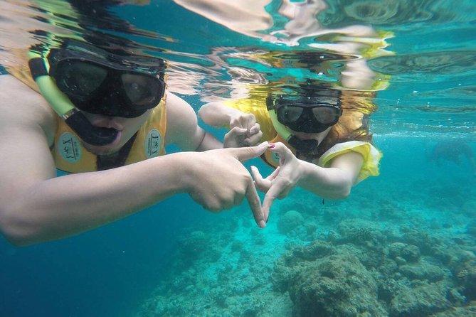Viagem de snorkel de 3 pontos
