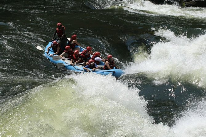 Air-cooled camp and rafting in Rishikesh (2n3d)