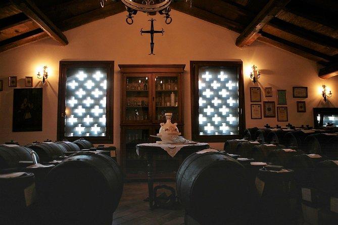 Modena: Tasting of Balsamic Vinegar of Modena