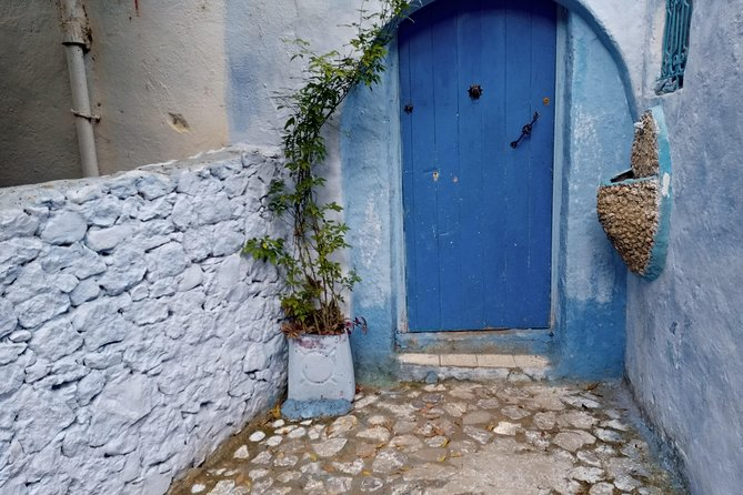 Chefchaouen Day Trip! The Blue Pearl photo 12