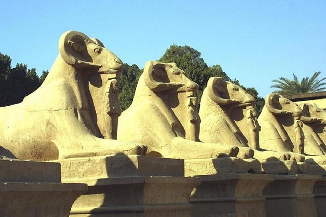 Luxor visit in one day