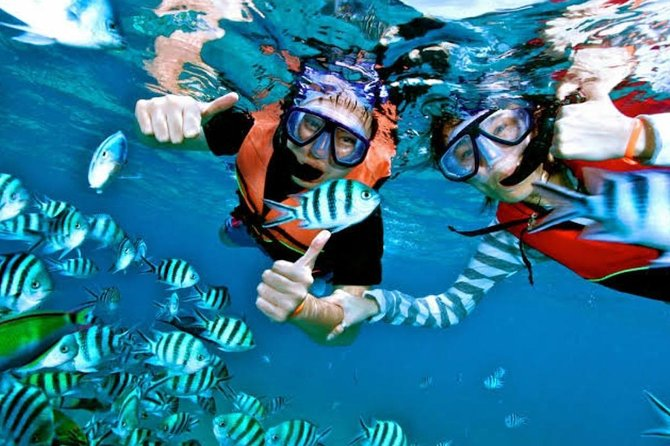 Snorkeling Experience At Blue Lagoon Bali With Lunch And Transfers
