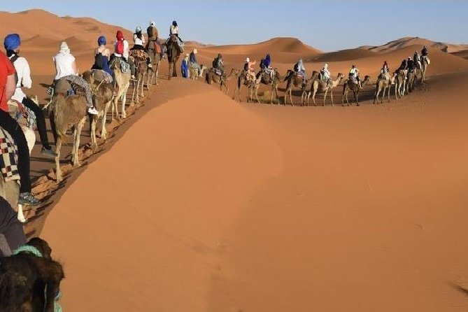 3 Days 2 Nights Private Tour from Marrakech to Fes via Sahara Desert photo 11