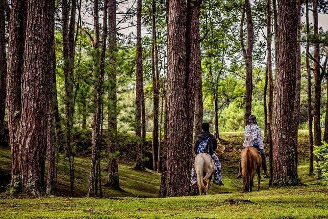 Full-Day Private Tour from Baguio Philippines