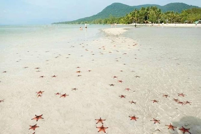Truly Vietnam- A great day to Starfish beach & Phu Quoc national park