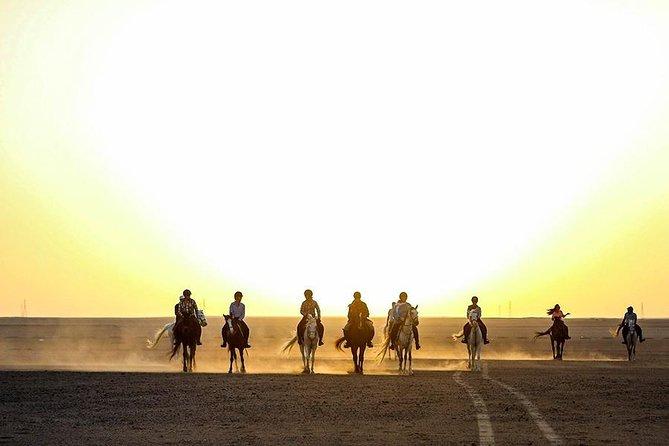 Horse Riding in Hurghada