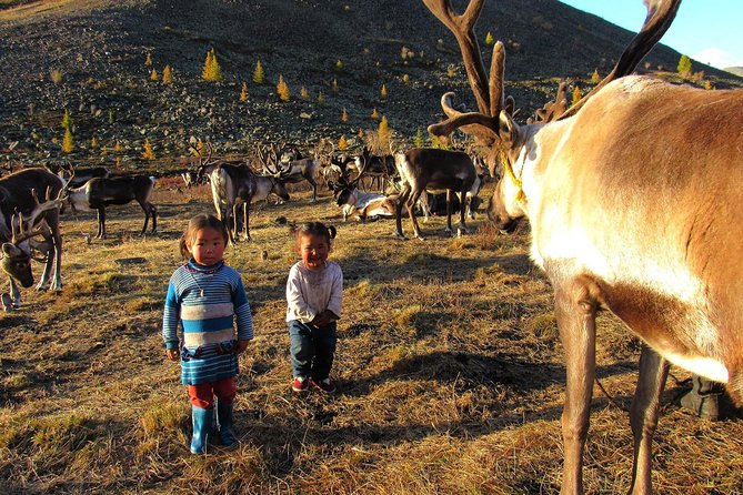 Multi-Day Tour to the Reindeer Tribe in Mongolia
