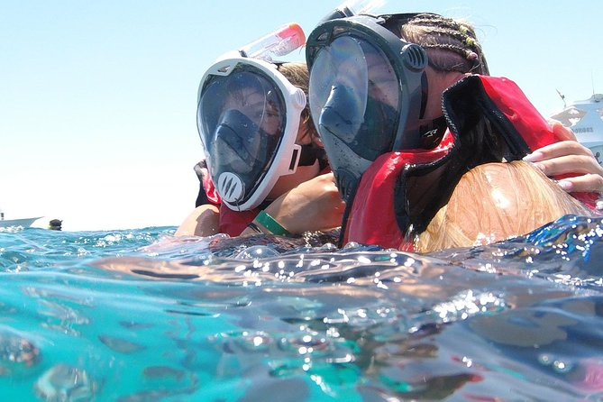 Hurghada: Red Sea, Dolphin Snorkeling Trip photo 6