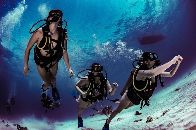 Learn how to scuba & Dive in one day