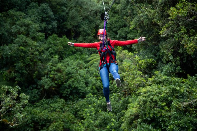 Zipline Adventure - The Original Ziplining Canopy Tour