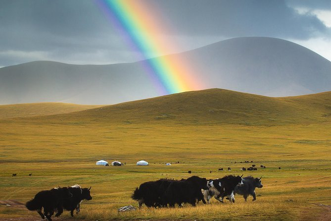 Peace of Mongolia