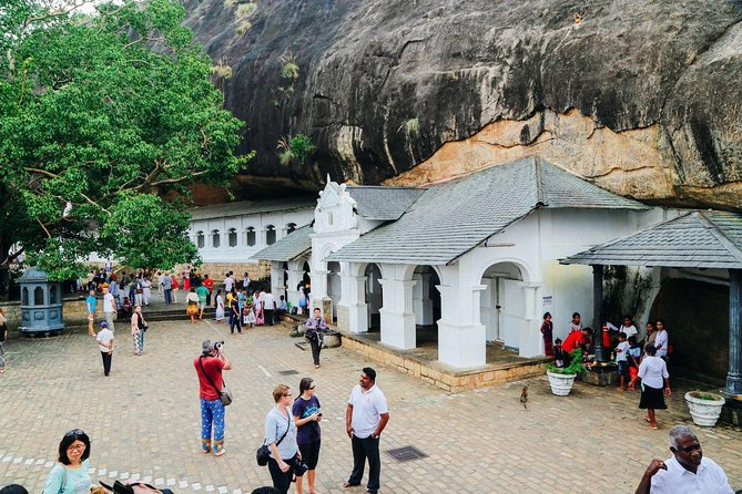 All Inclusive Private day tour to Dambulla, Sigiriya and Minneriya Safari photo 7