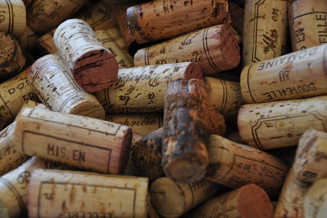 Full Day Private Tour with Tasting of 10 Grands Crus - The Best of Burgundy
