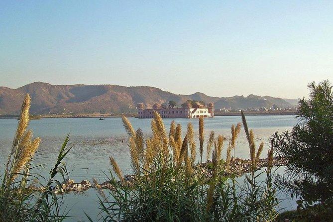 Trek Around Wilderness of Beautiful Man Sagar Lake in Jaipur