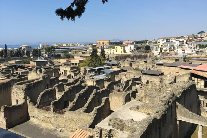 Herculaneum-Wine tasting tour with licensed guide included