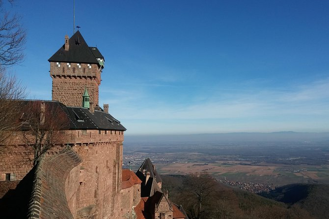 The Emblematic: visit of villages, Haut-Koenigsbourg, Wine tasting
