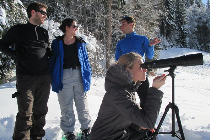 Megève: Observe Wildlife - Snowshoeing Trek photo 2