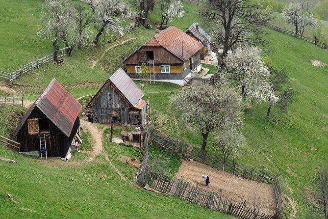 Village life in Transylvanian Carpathian mountains - 8 days