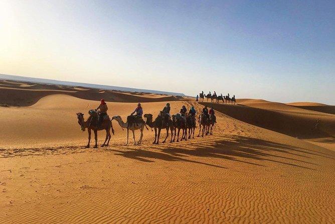 3 days tour from Marrakech to Fes via Sahara Desert