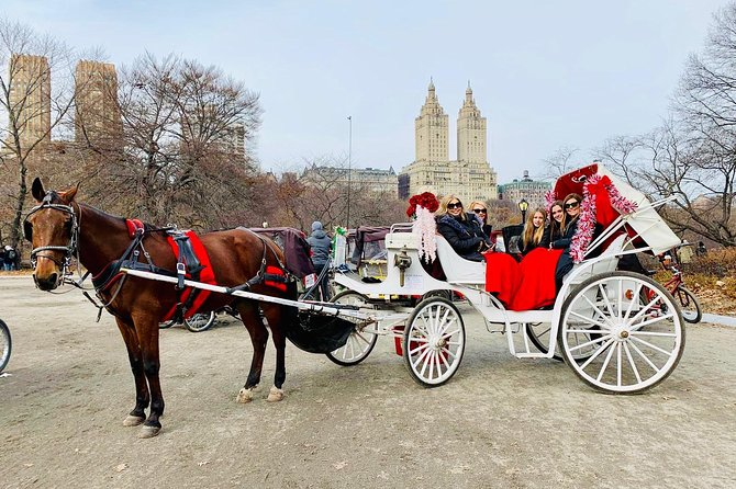 45 min VIP Central Park carriage ride