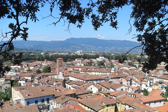 Private Transfer: Rome City to Lucca and vice versa