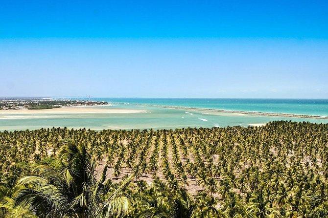 Circuito Praias: Praia do Francês, Barra de São Miguel e Praia do Gunga