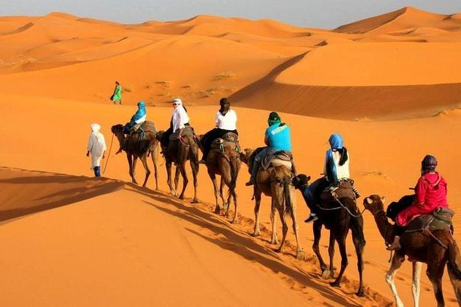 5 Days Tour from Tangier to Marrakech via Chefchaouen Fes and Sahara desert