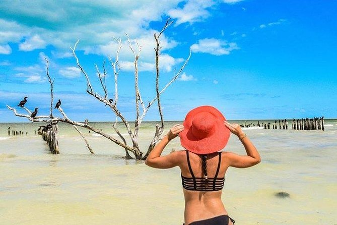 Tour Holbox - Two Island & One Cenote