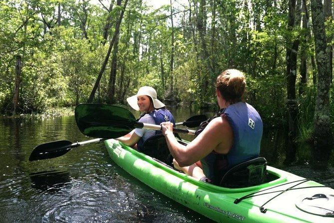 Alligator River Kayak Adventure