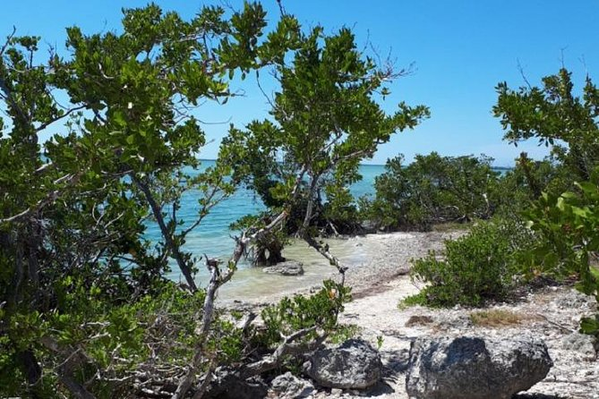 Miami to Key West Day Trip Transportation