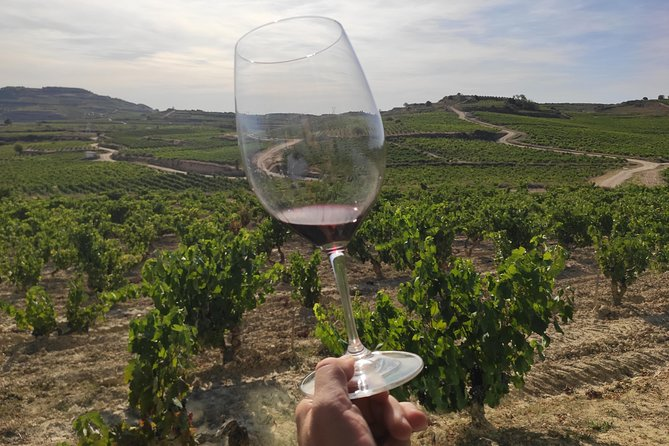 La Rioja winery visit with tasting and traditional lunch in small group tour