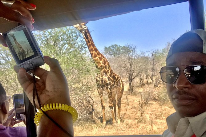 Kruger NP & Panorama route with meals and safari drives included