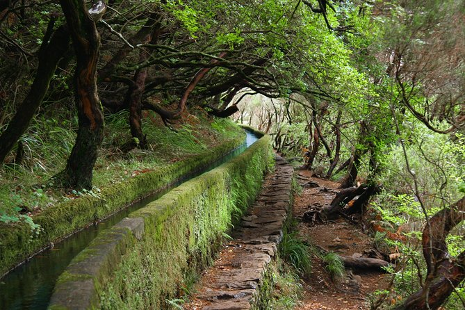 Tour to Rabaçal / 25 fountains on Madeira Island