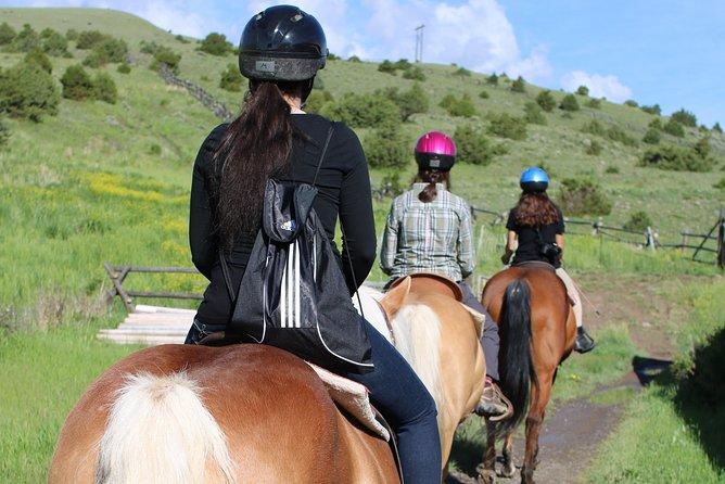 Guided Horseback Trek through Blue Flower Trail